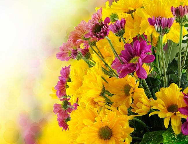 庸者远方寻快乐,智者脚下种幸福