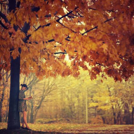 树叶落了,就会还有新叶,来替代