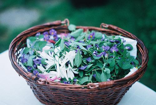 缘份本是生命中的偶然,花开才有花落,有散才能有聚