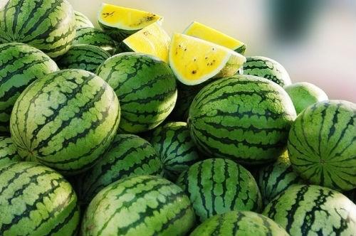 你放弃的不是一次吃西瓜的机会,而是失去了自信