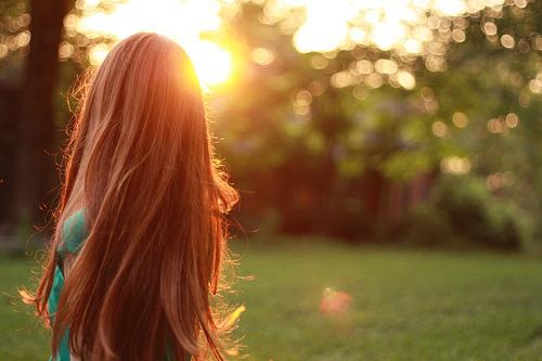 恍惚中,又是落花满地,又是草枯叶黄的时节