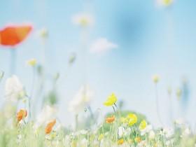 生活是一份恰到好处的宽恕