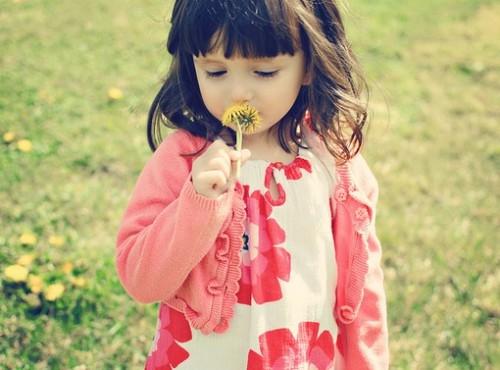 生命是盛开的花朵,美丽舒展,绚丽多姿