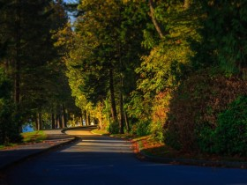 成功的道路充满了荆棘和坎坷,没有人能随随便便成功
