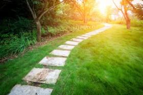 真正的自由是在无所依傍之时,发现无路而处处是路