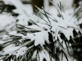 经历风霜雨雪,走过平淡流年
