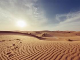 人生依然是掩埋在一抔黄土之下