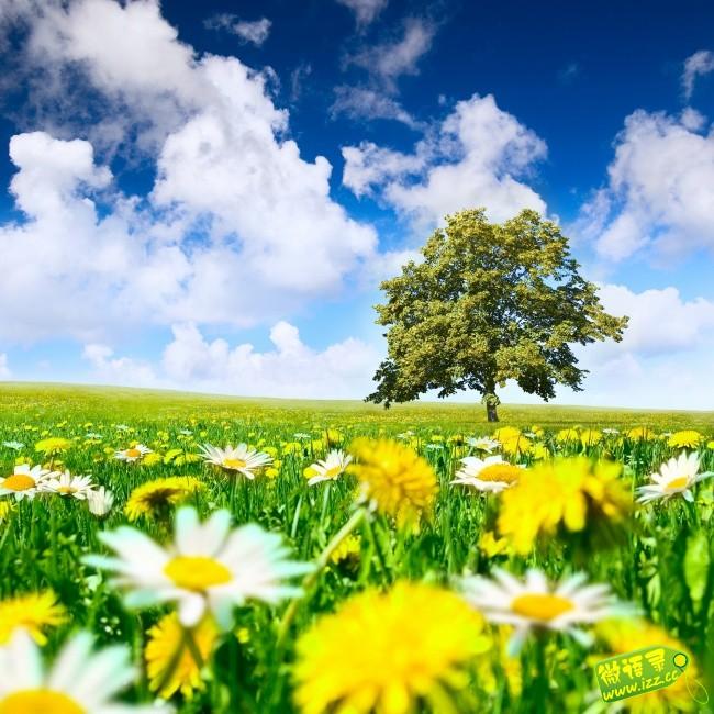 生命是优美的乐曲,音律和谐,宛转悠扬