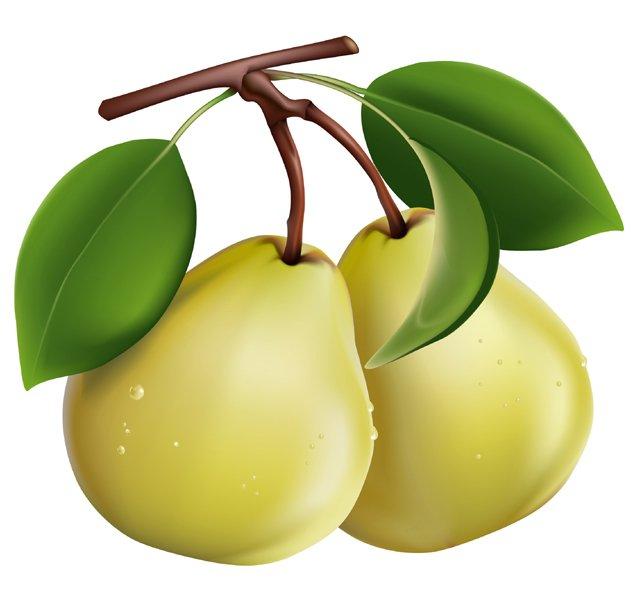女人是梨,男人是洋葱