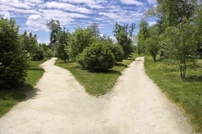 人生是一条有无限多岔口的长路,永远在不停地做选择