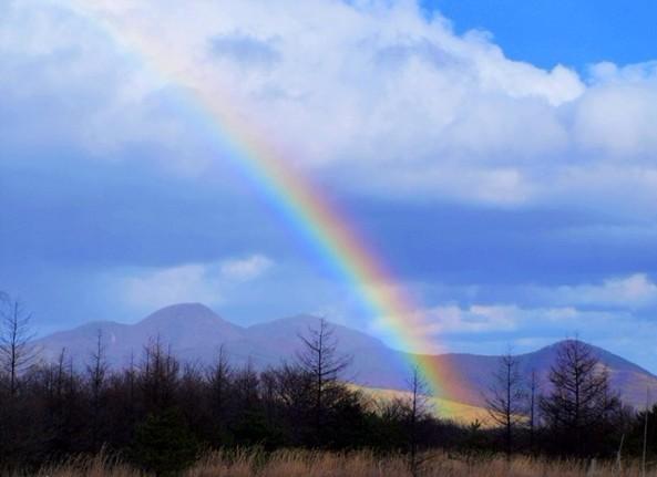 其实我们拥有的才是自己的幸福,争取的既是希望